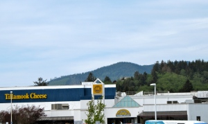 The Tillamook Cheese Factory is one of the most popular tourist spots in Oregon––especially in summer.