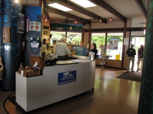The Visitor Center at Cape Perpetua has a gift and book shop, displays of coastal flora and fauna,  a theater showing informative videos, and a great ocean view.