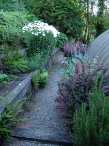 Down by the greenhouse. This is one of many gravel areas that I keep weeded.