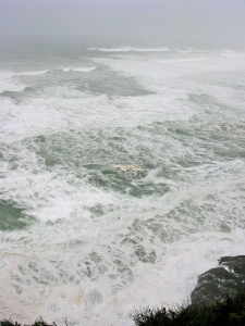 The ocean was churning, the wind was howling, and the torrential rain horizontal.
