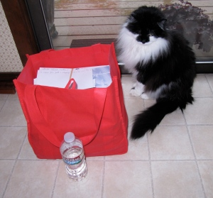 My big red tote was filled with tax stuff––mostly back-up. Of course, Groucho was curious.