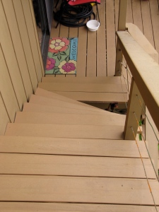 Notice the step that gave way on the back stairs.