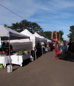 Most participants had canopies to protect from the sun. The booths extended around the back  of the Yachats Commons and into the trees in front.