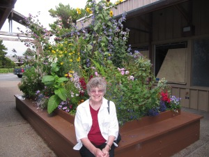 The shops at Salishan are mostly vacant. See the papered windows behind me. It is a lovely shopping center;. Note the beautiful flowers.